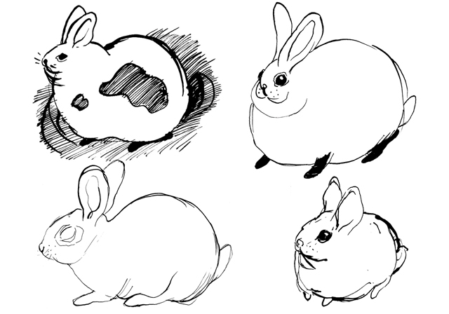 Rabbits_sketches, indian ink, 2010