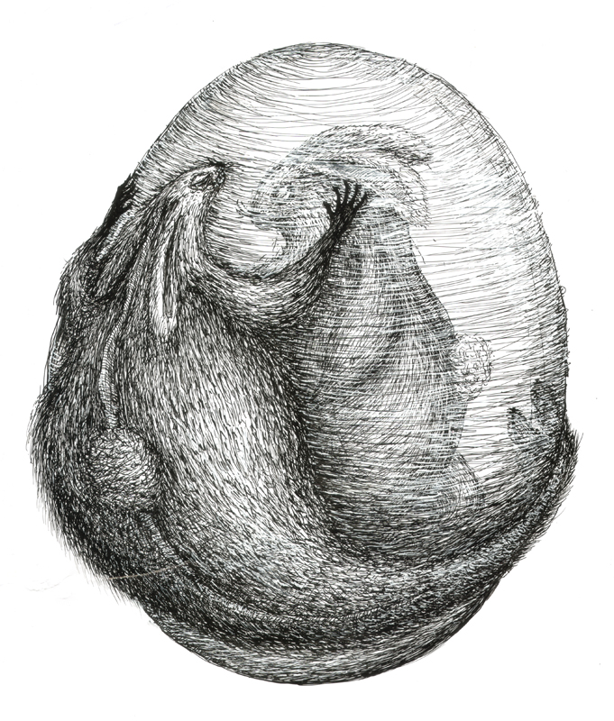 Rabbit - feeling giving, indian ink, 2010, 30x42 cm