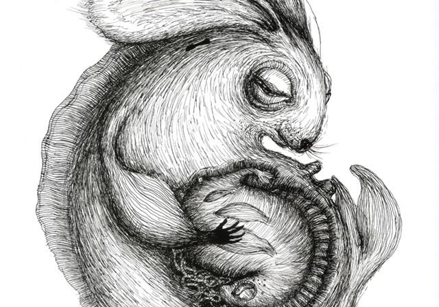 Rabbit Moods