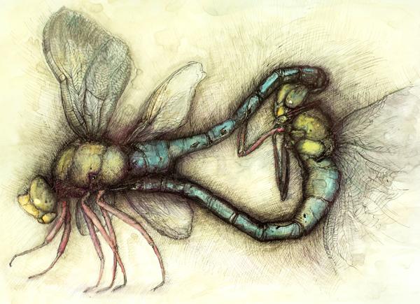 Dragonflies in love_mix technic_2011