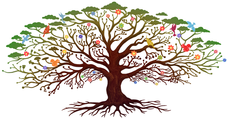 Cup design Tree of life