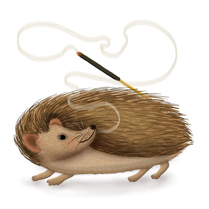 hedgehog_yoga