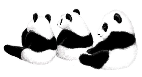 panda web_3