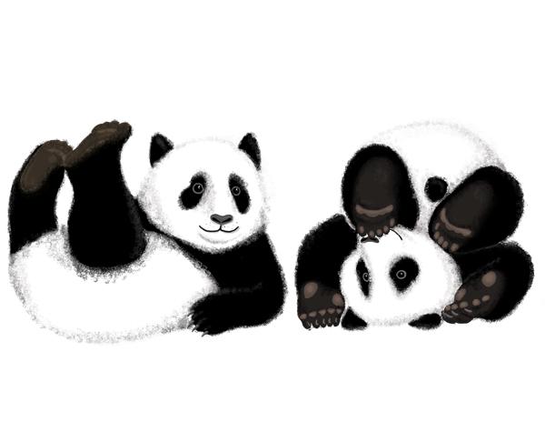 panda_web_1