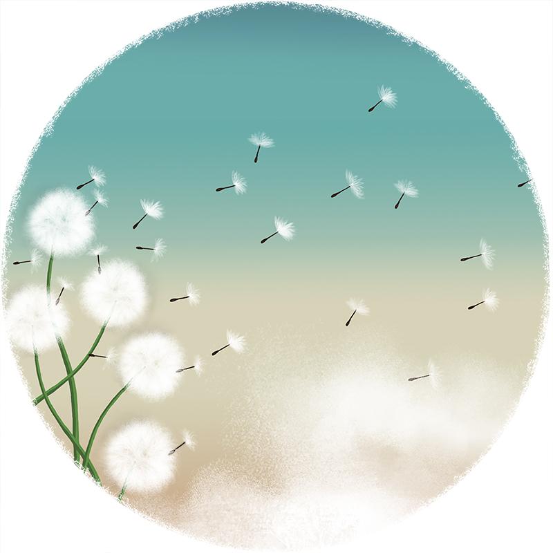 dandelion fly_web