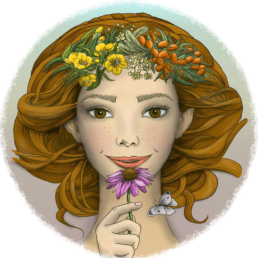 elf lady echinacea