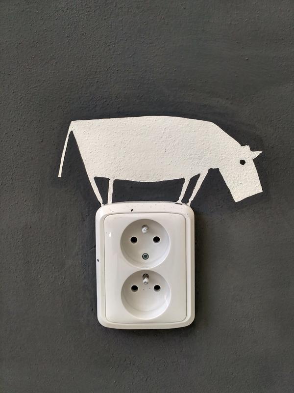 socket_hippo