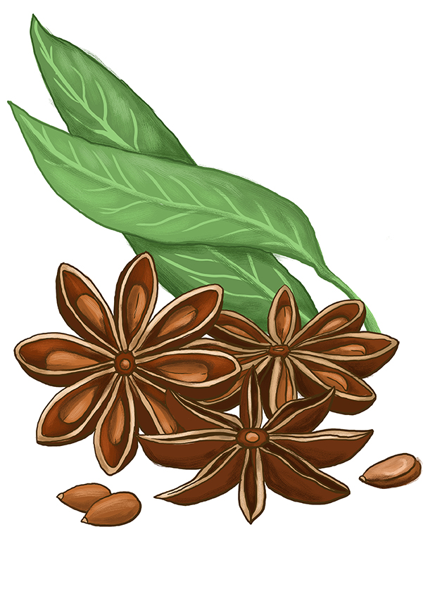 badyan star anise